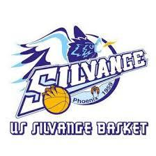 US SILVANGE BASKET